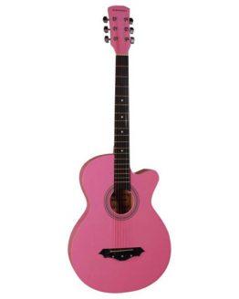 Guitar - Norfolk