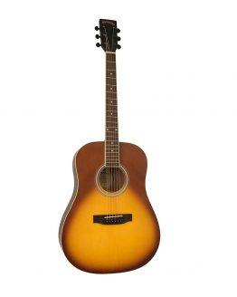 Guitar -Santana Western